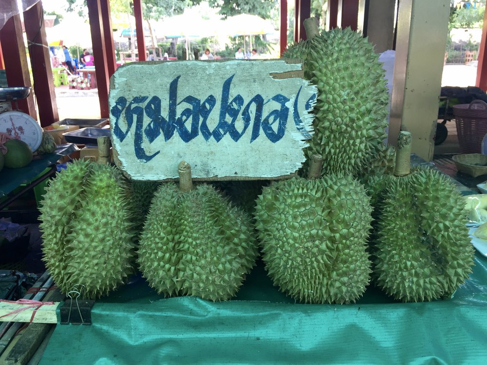 Durian: a fruit common in SE Asia that smells like rotten garbage yet somehow is bought & sold daily at markets everywhere.