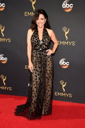 Julia Louis-Dreyfus in Carolina Herrera