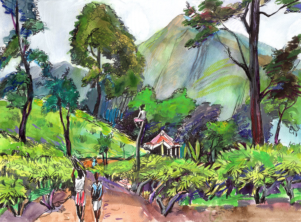 11. Tea plantations in Ella near Little Adam's pick Watercolours, ink, colour pencils Original size 35cm x 25cm