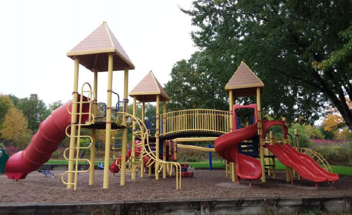 Actual Large Children's Playground Set to be Purchased