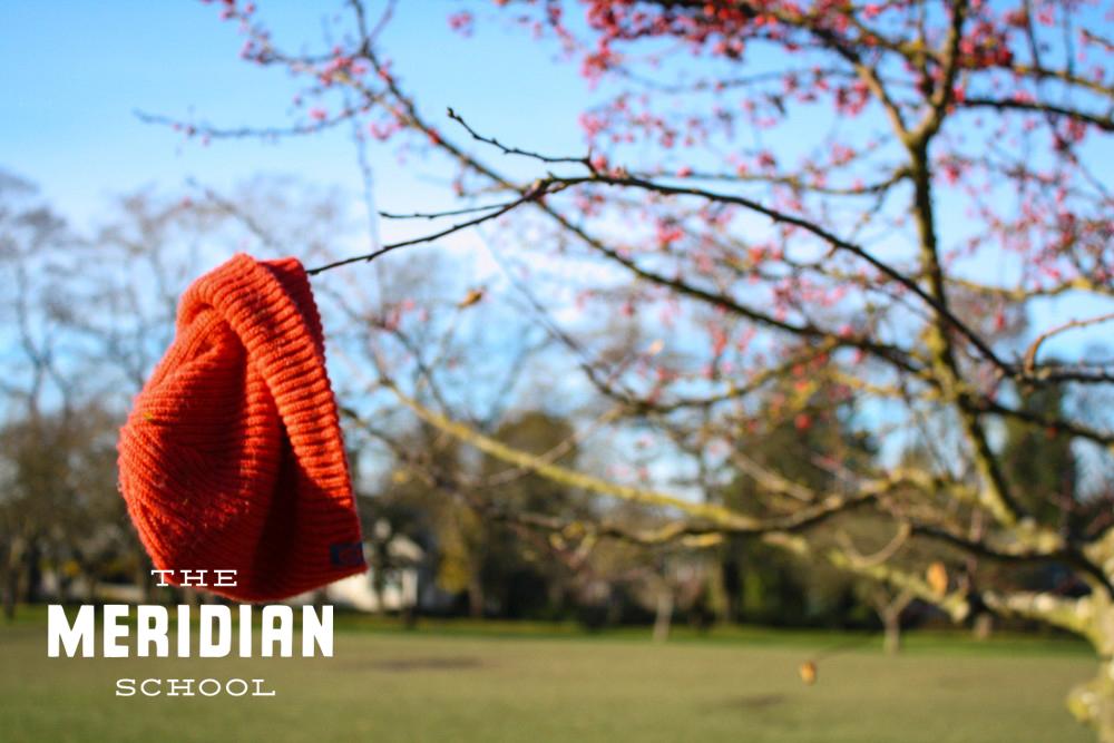 The Meridian School -