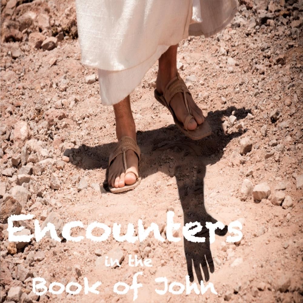 Encounters in the Book of John.jpg