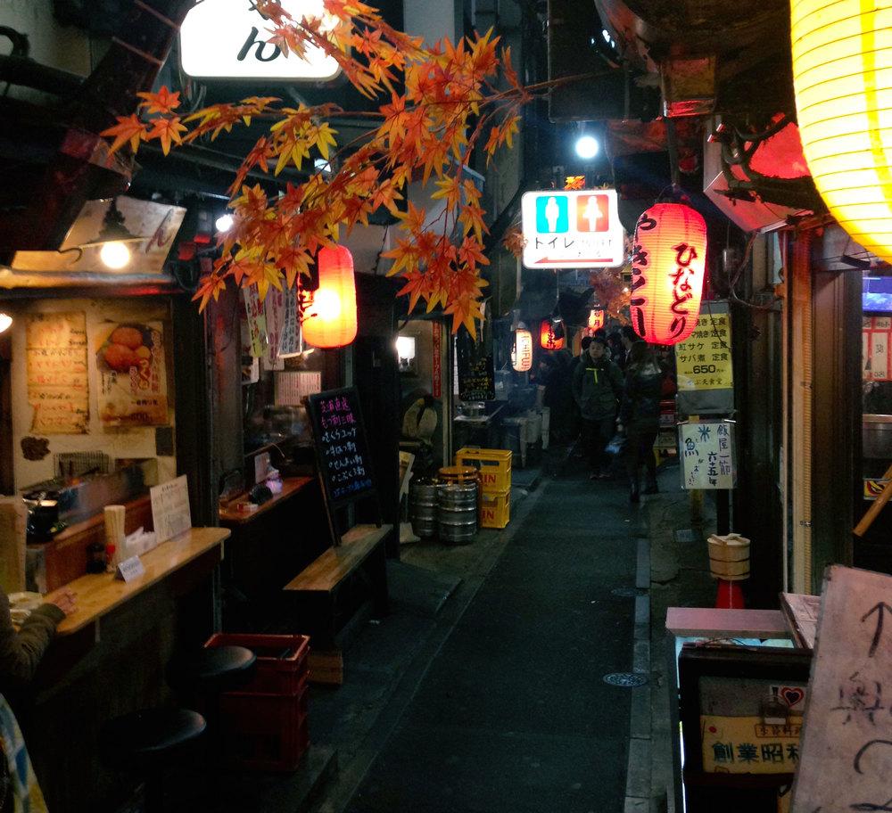 Piss Alley 2.jpg