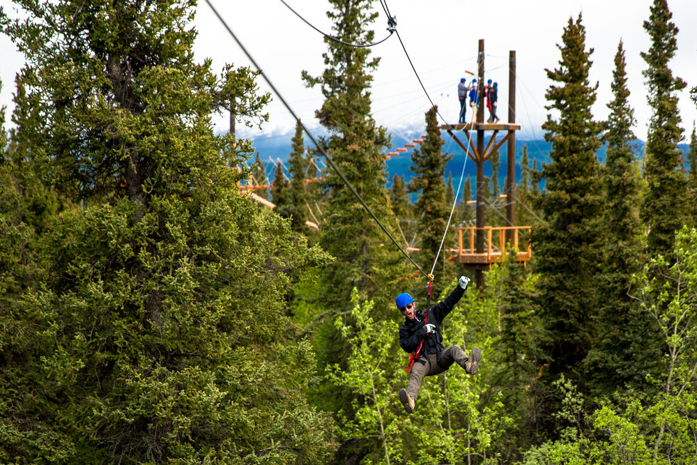 Zip through the Boreal Forest!
