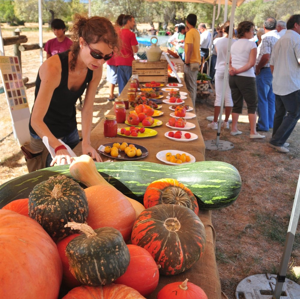 Members of La Troje selling their products at a local food fair, picture by Rubén Pulido.