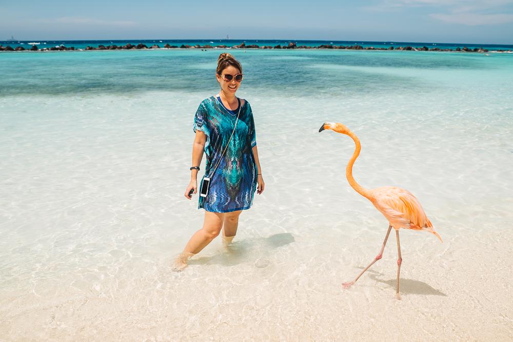 Aruba flamingo www.thetravelpockets.com