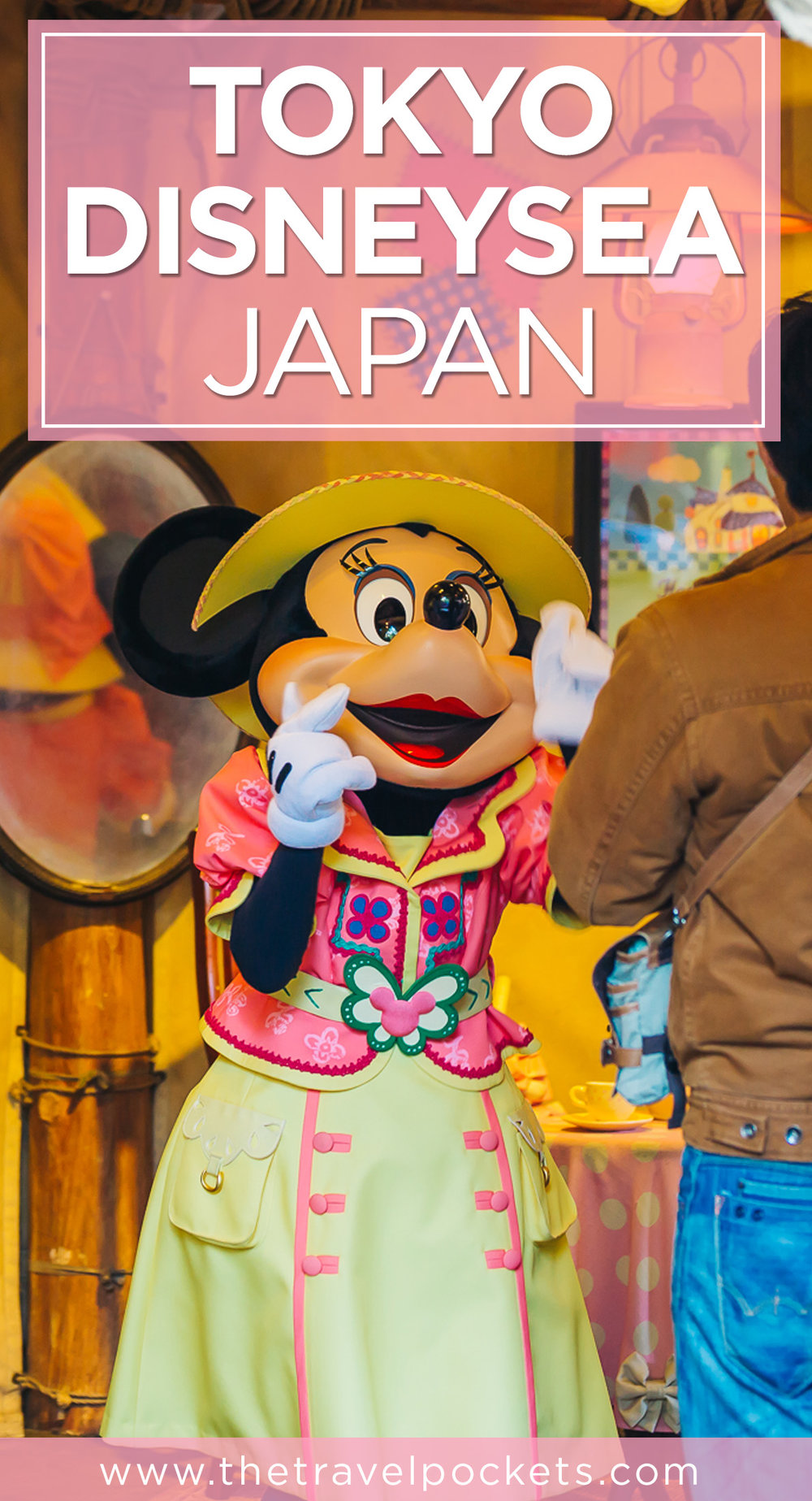 Pinterest DisneySea + www.thetravelpockets.com