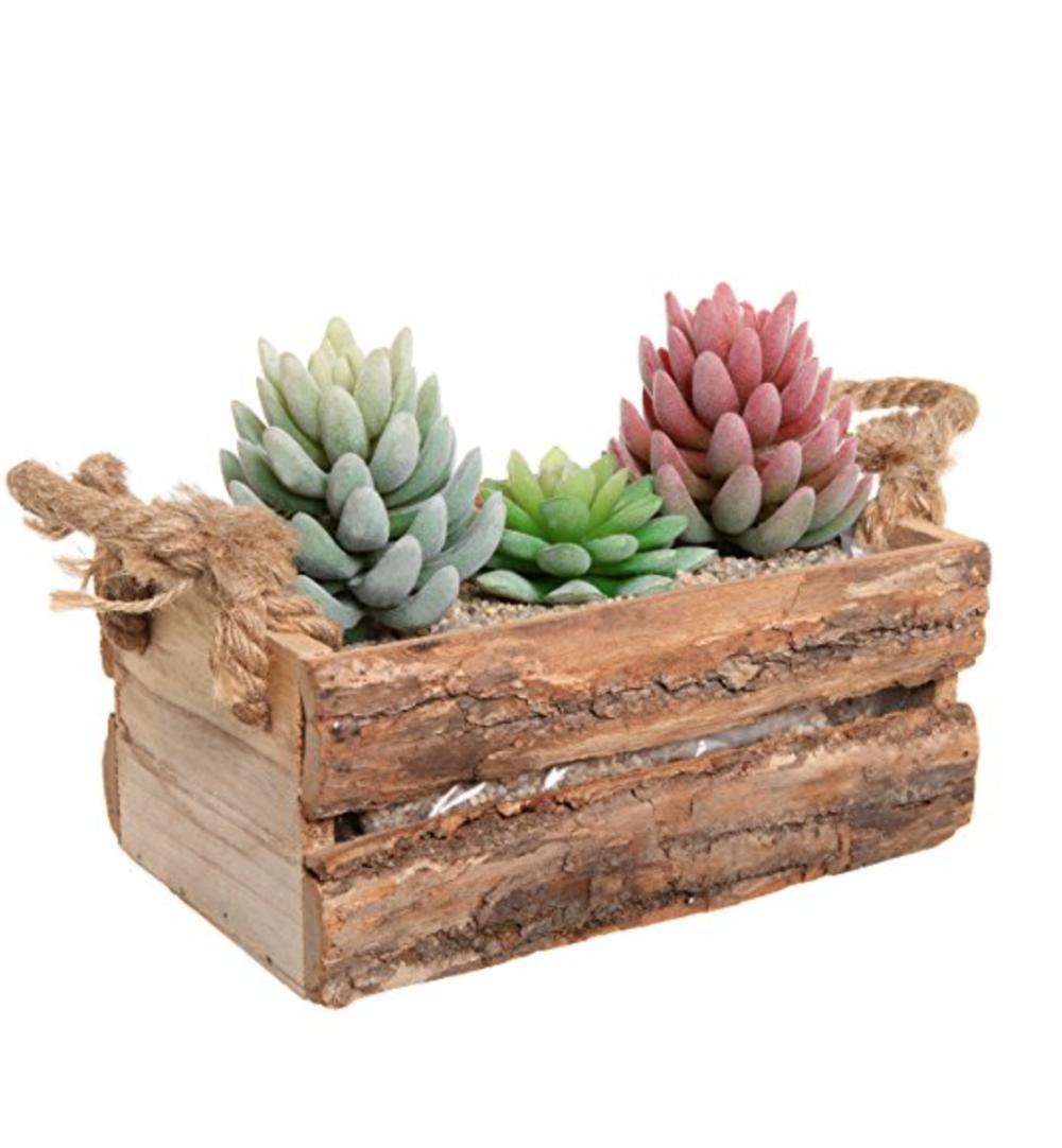 Rustic Natural Wood Plant Box Pot