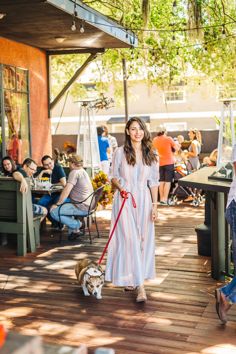 Kuma gets lots of attention at   Ella's Cafe