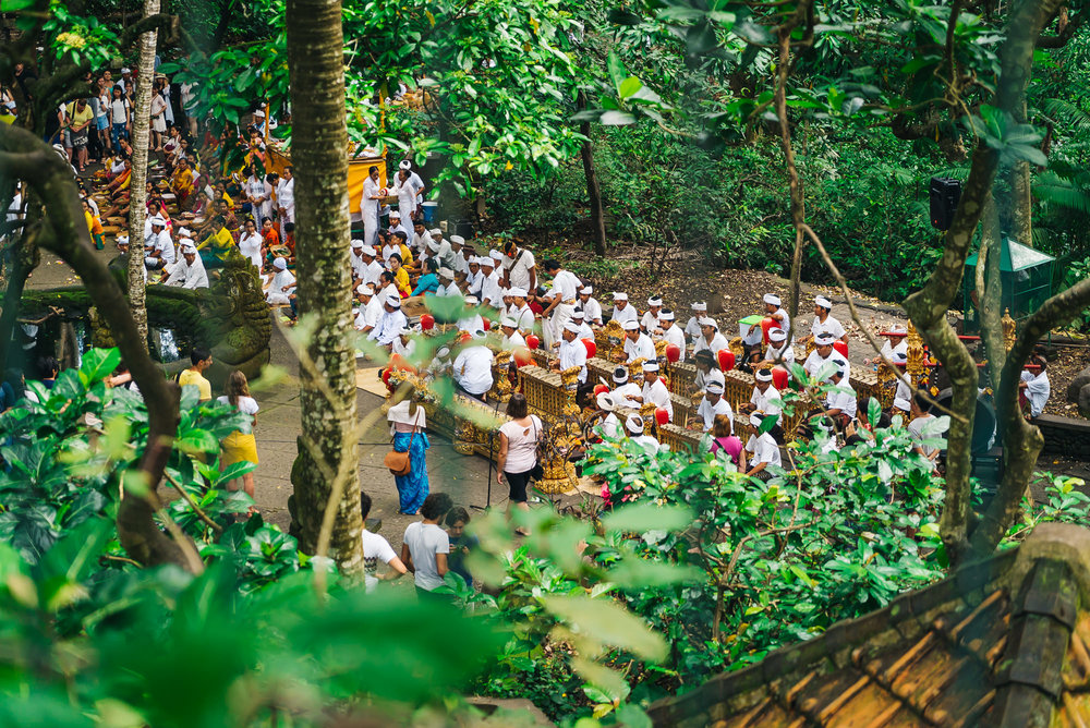 Special ceremony held at the Sacred Monkey Forest
