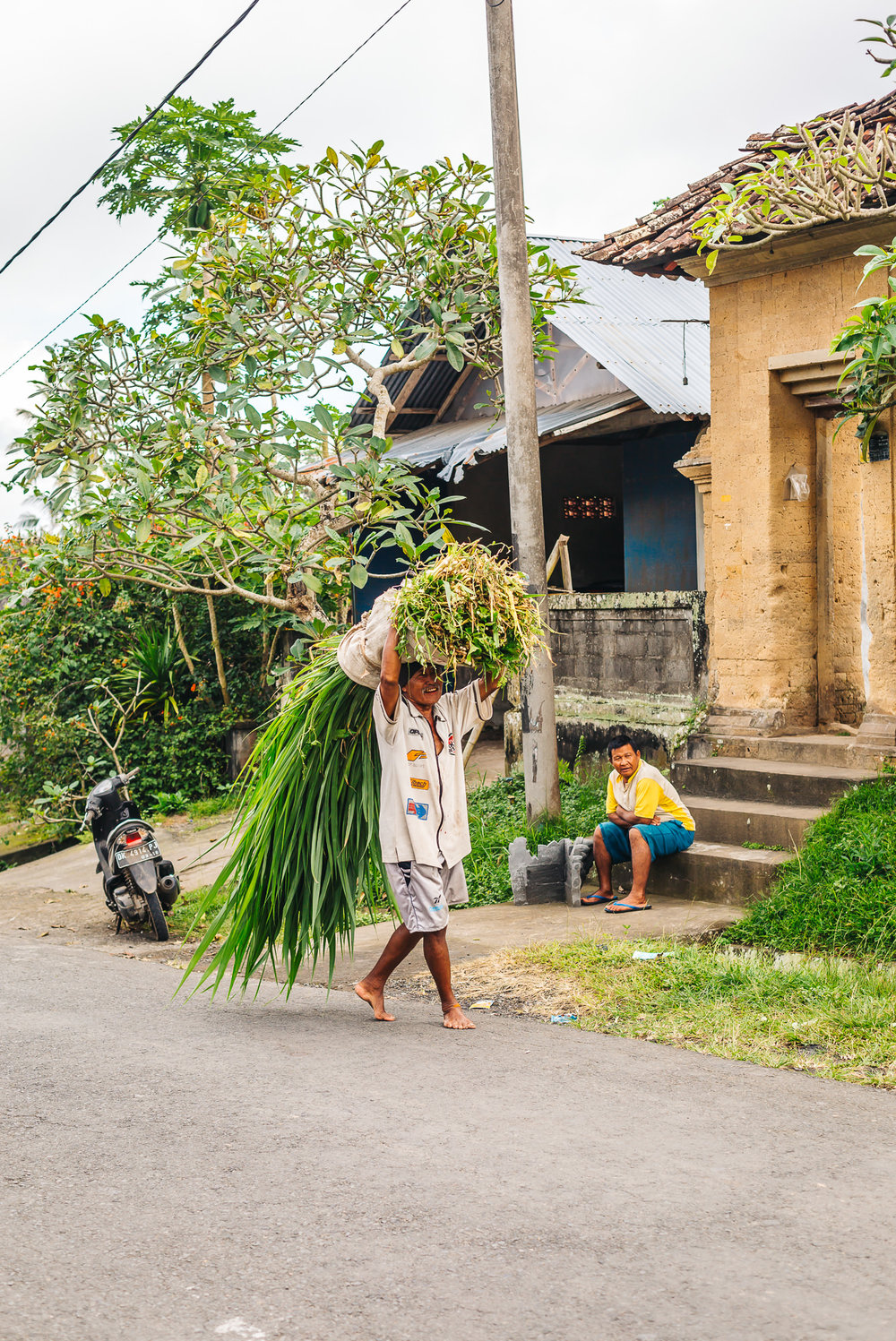Local Balinese Farmer in Ubud