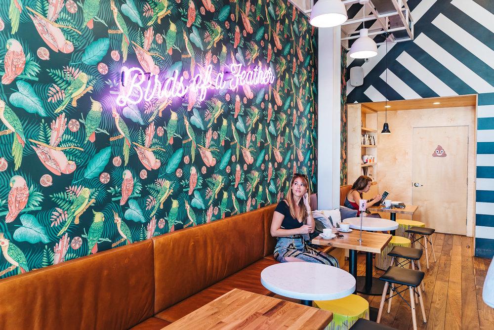 PARAKEET CAFE : LA JOLLA, CALIFORNIA