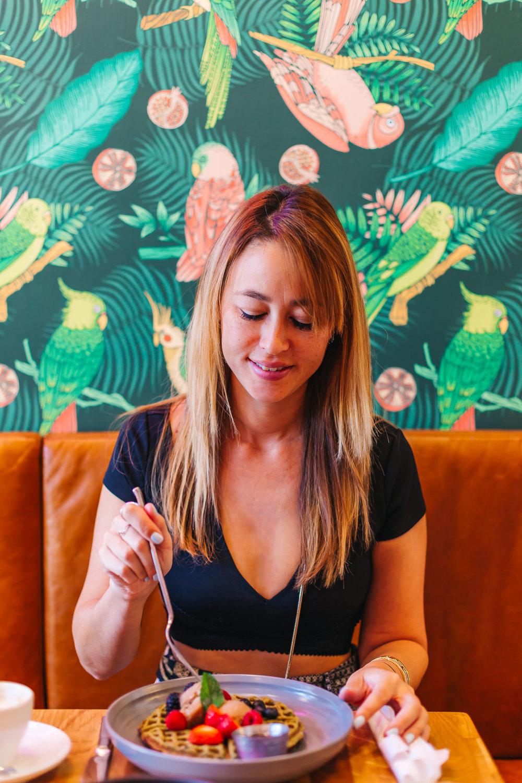 Parakeet Cafe in La Jolla, California