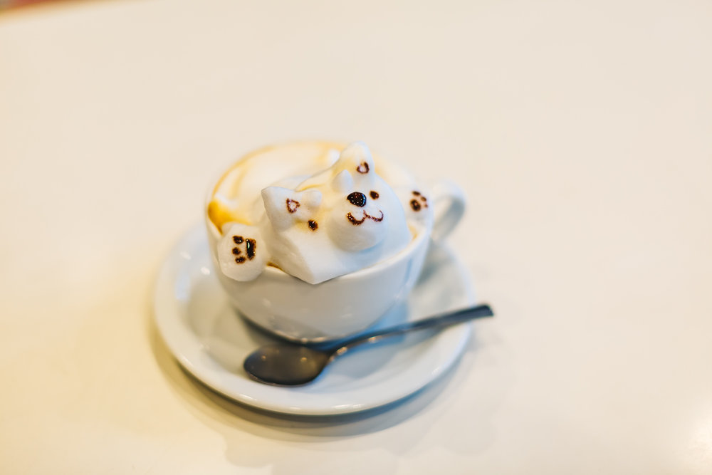 Dog 3D Coffee art at Reissue in Harajuku
