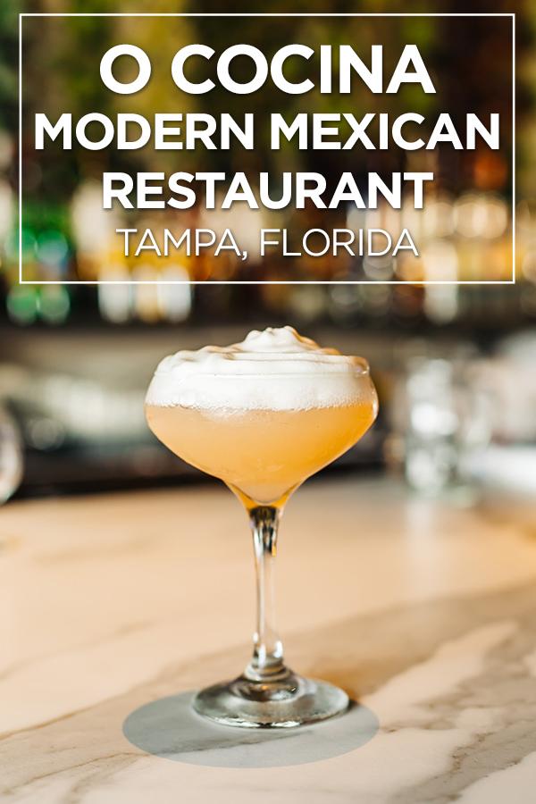 O Cocina Modern Mexican Restaurant in Tampa, Florida