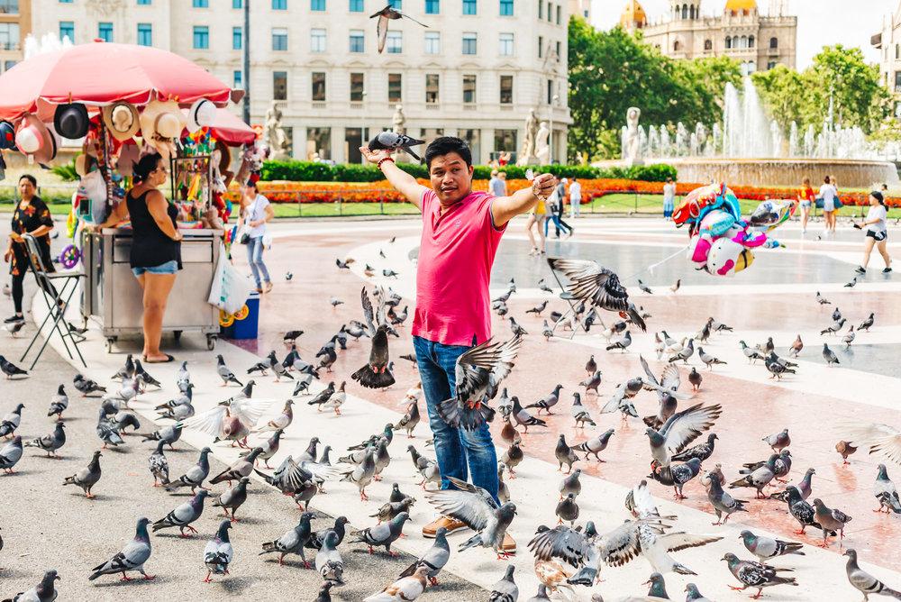 Hundreds of pigeons at Placa Catalunya