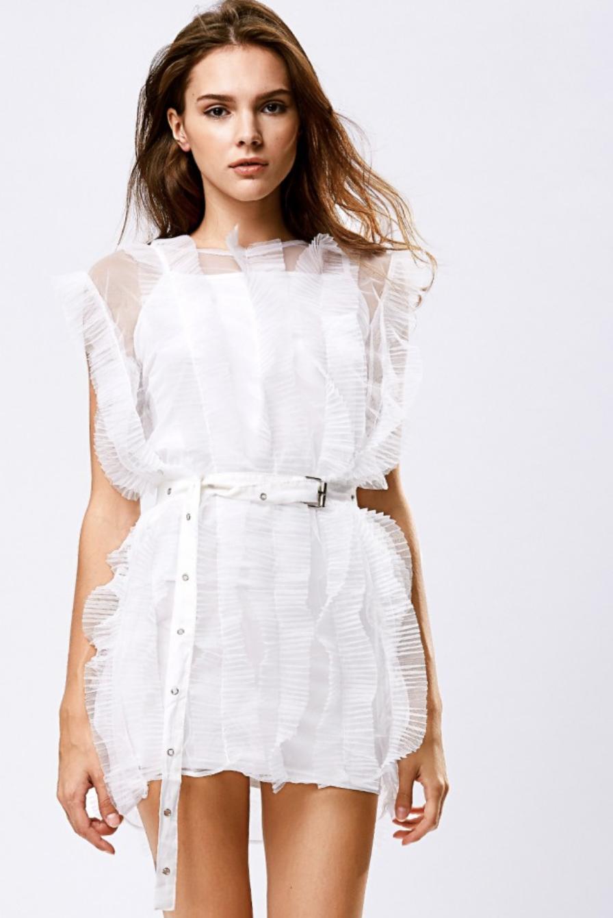 Storets Jessica Sheer Pleated Dress Set
