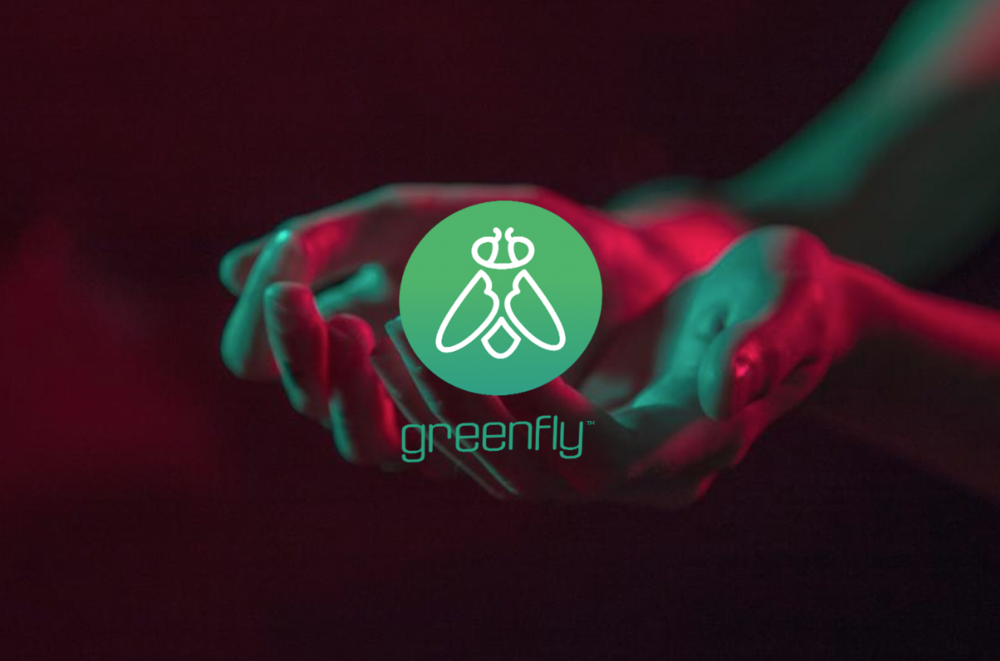 Greenfly - Santa Monica, CA