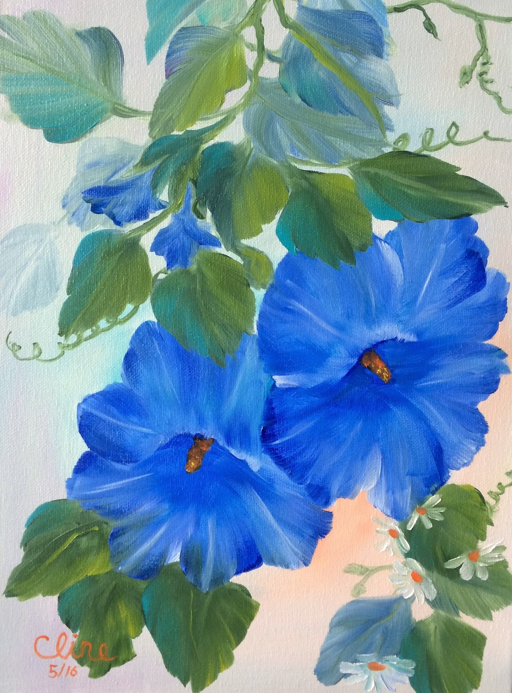 """Blue Morning Glories"""