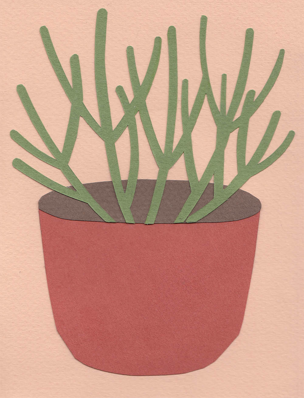 PlantsOnPink7.jpg