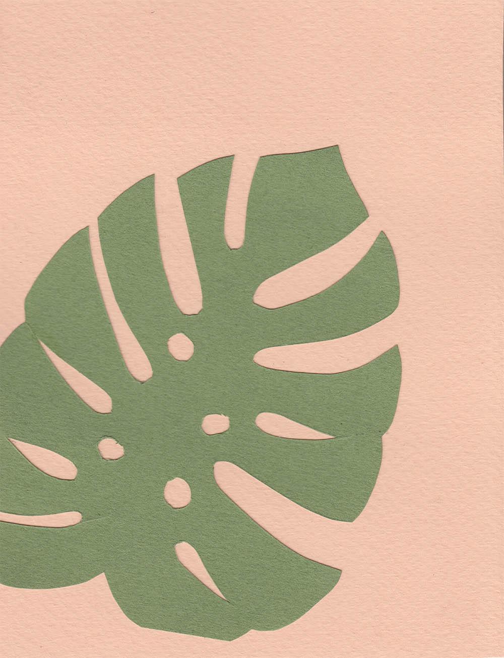 PlantsOnPink3.jpg