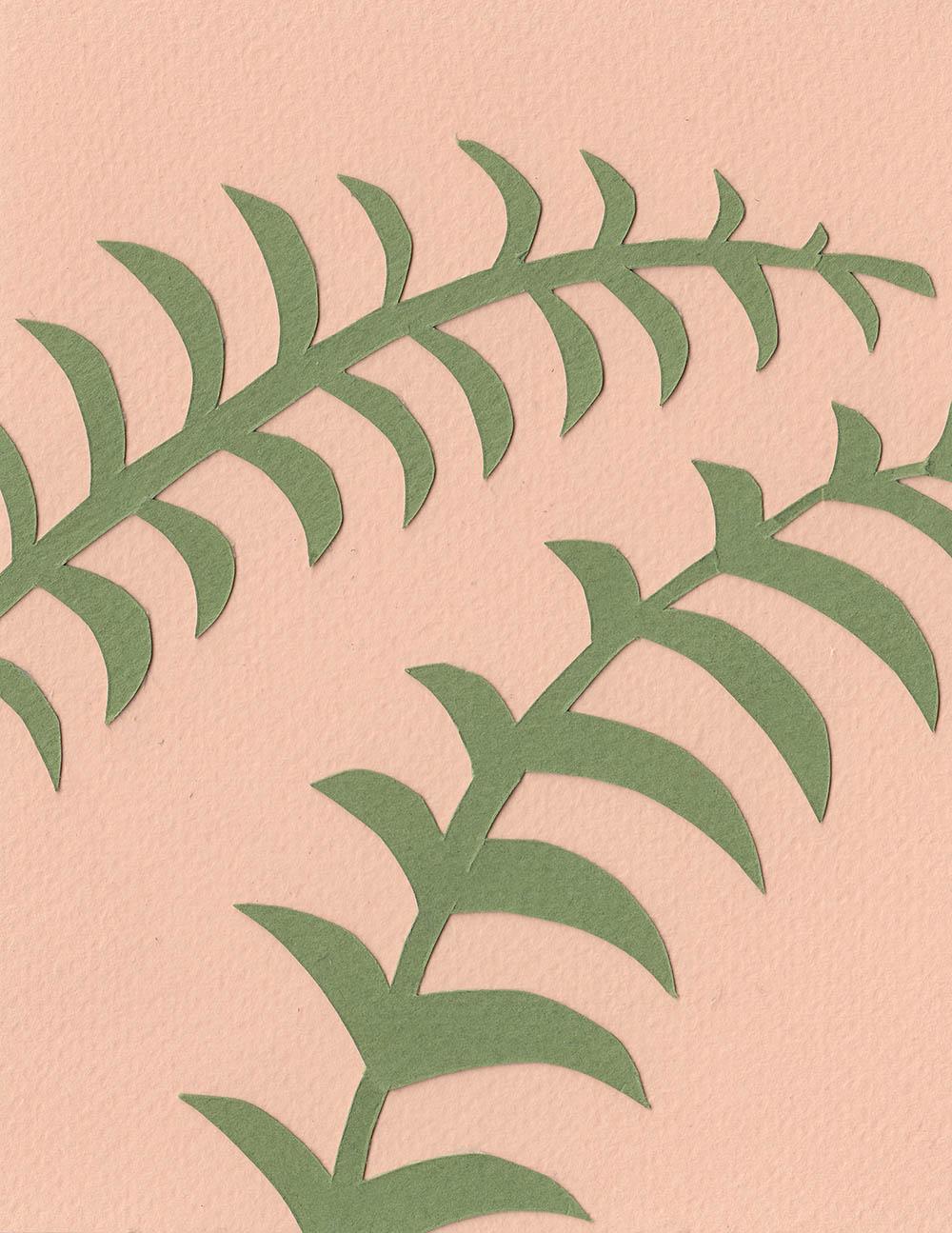 PlantsOnPink.jpg