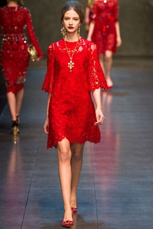 dolce-gabbana-rtw-fw2013-runway-65_112958765887-jpg_promotions_feature_tn.jpeg