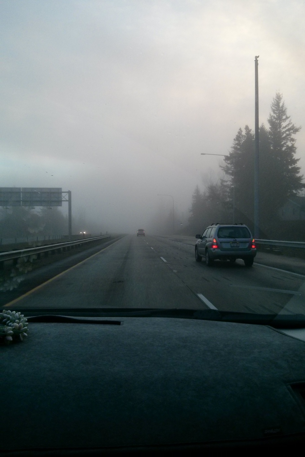 Road trips in the fog