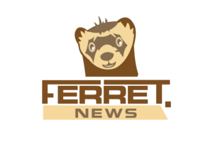 Ferret.News+2+-01.png