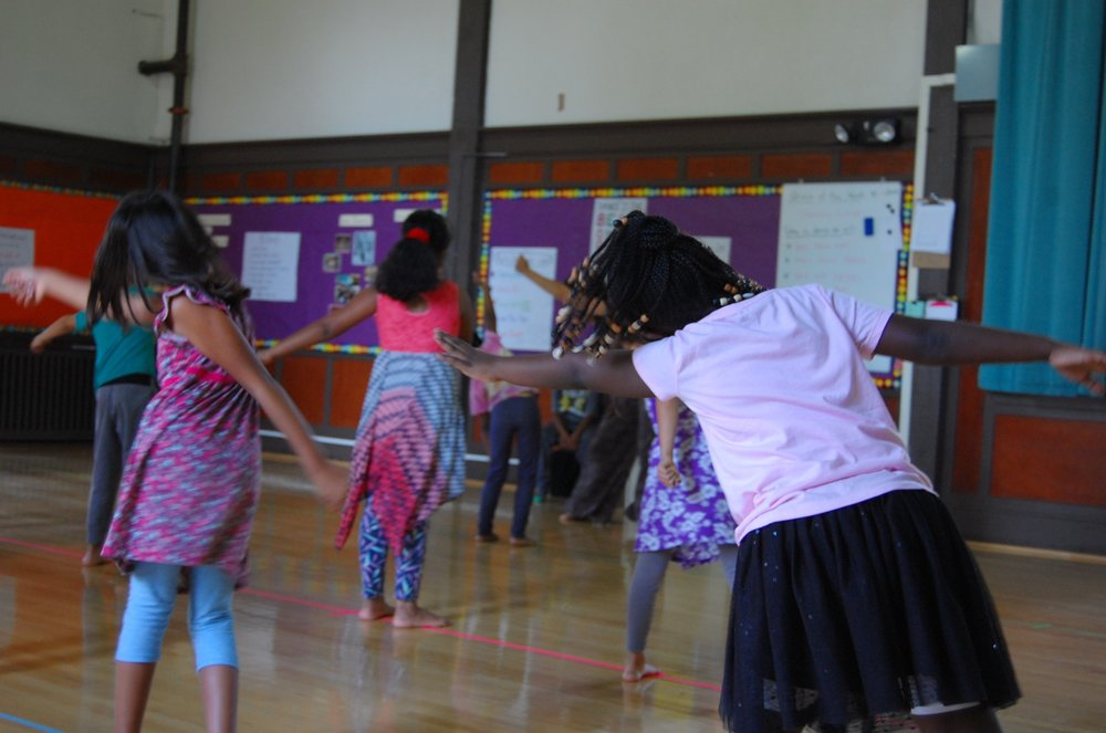 Welcome to the John Muir dance blog! - This monthly feature opens a window into our dancing practice and process.