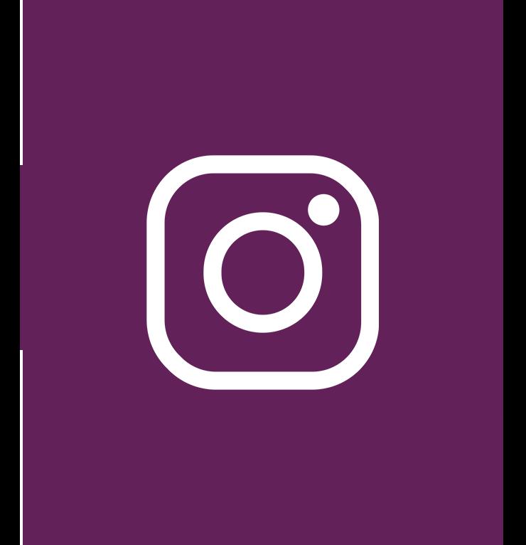 social_icons_insta.png