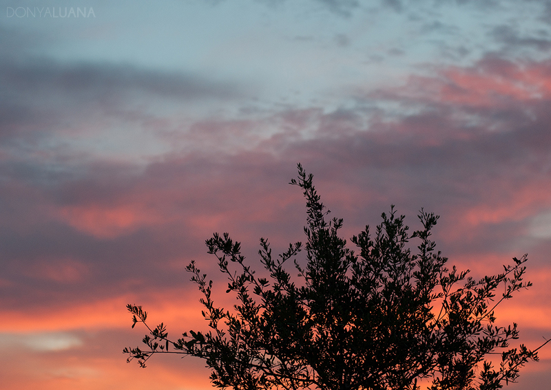 tuesday-sunrise1.jpg