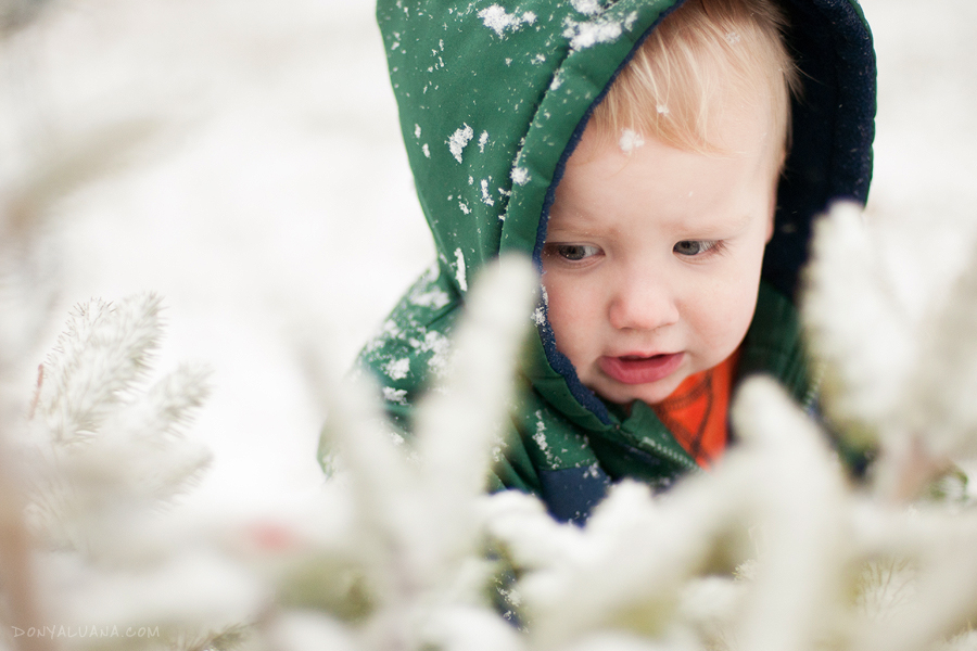 first-snow-2011-01.jpg