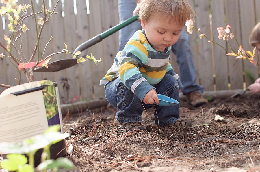gardening-02