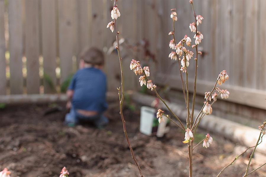 gardening-03