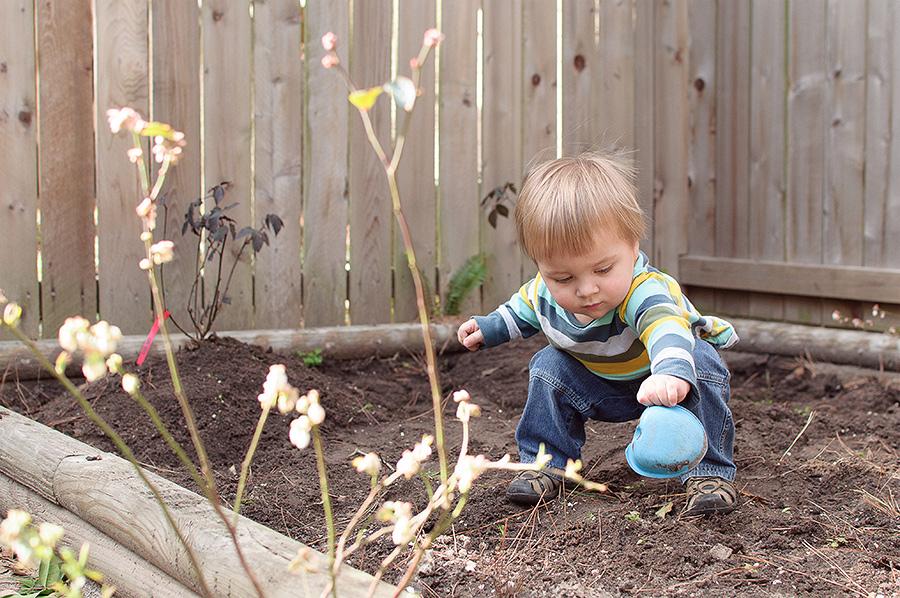 gardening-06