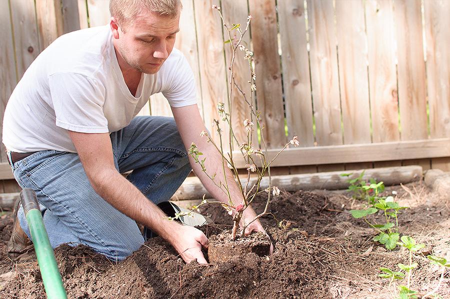 gardening-07