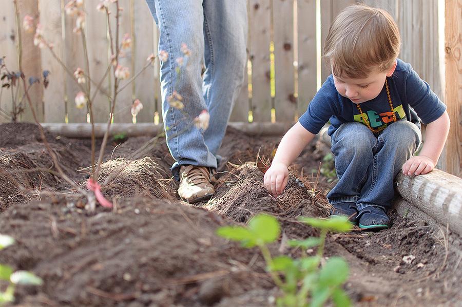 gardening-10