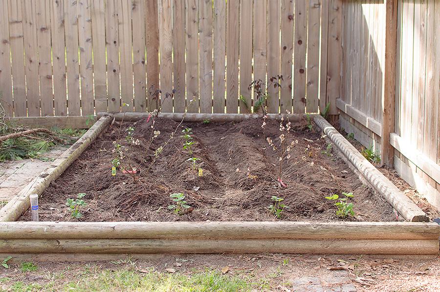 gardening-14
