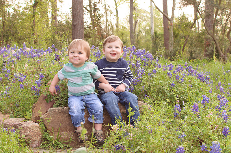 Bluebonnet photos in northwest Houston