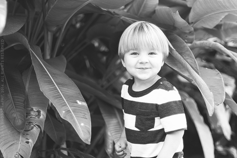Tomball/Spring TX Family Photographer Donya Luana