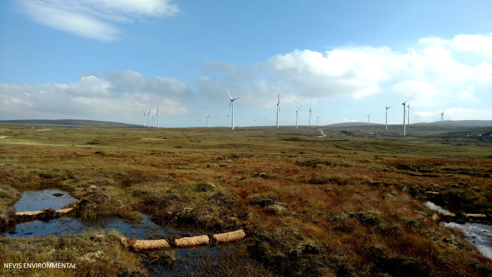 Peat Bog Restoration Highlands