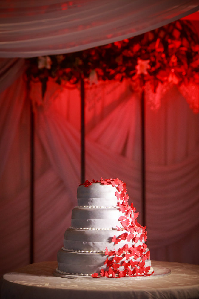 grand manor gardens wedding rbadal photography tongaat indian wedding cake