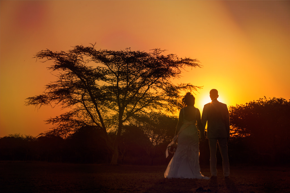 Safari Park Hluhluwe St Lucia RBadal Photography sunset silhouette