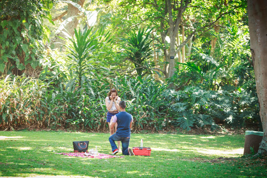 botanic gardens engagement proposal rbadal photography durban down on one knee