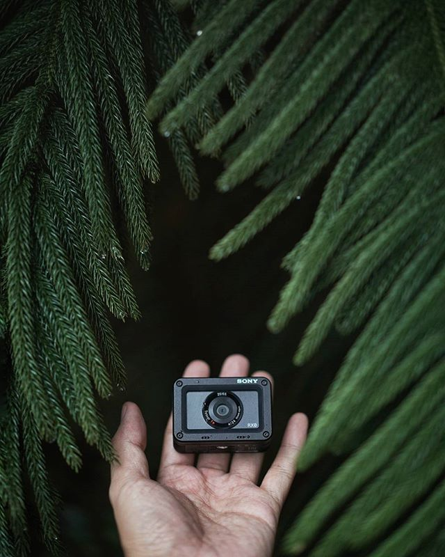 Smallest camera with 1inch sensor #sonyrx0 #rx0 #sonyindonesia #handsinframe