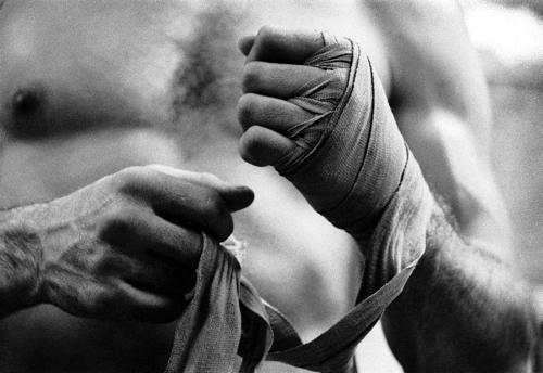 fight_7.jpg