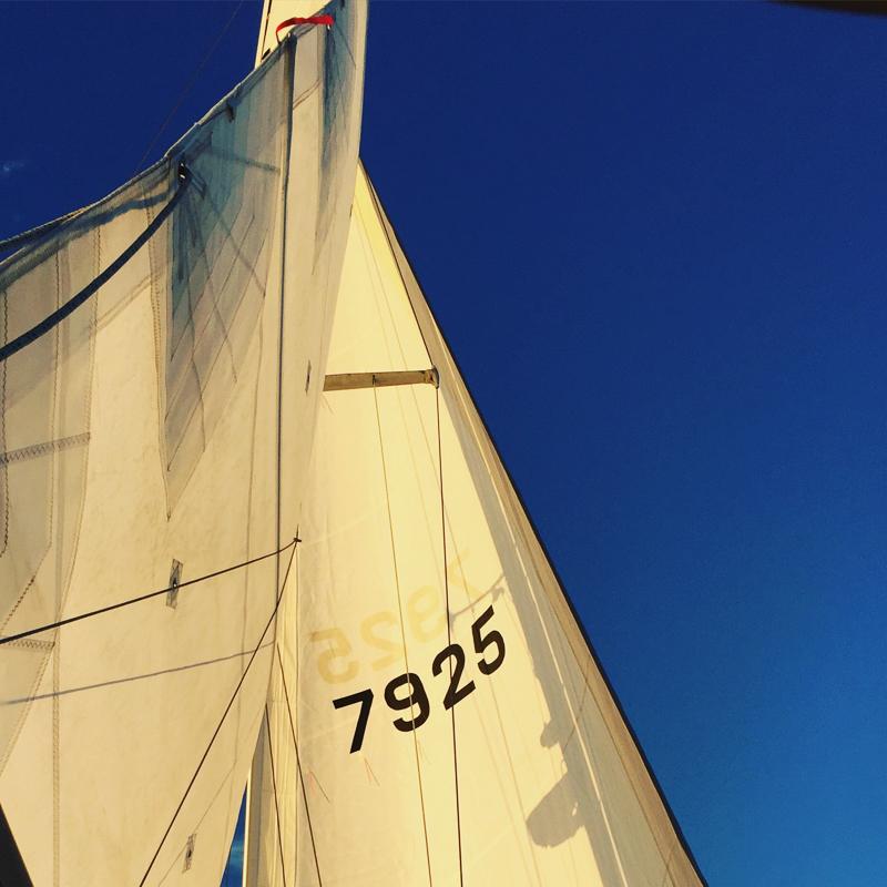 singlehanded_sailing-2-2.jpg