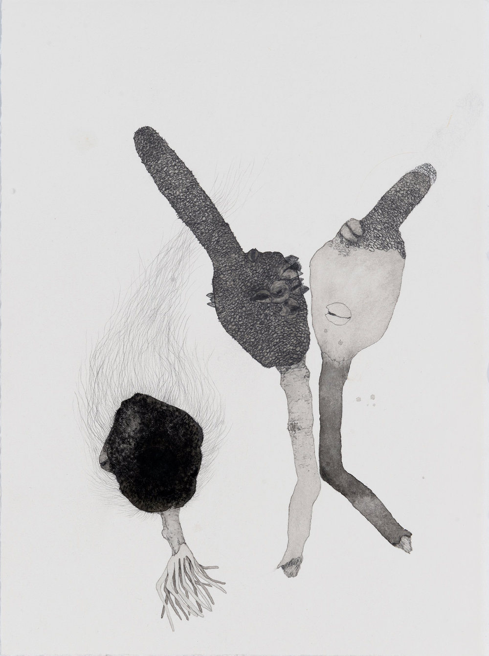 Sway, 2017, ink, graphite and conte on paper, 28.5 x 38cm. Photographer:Eva Fernandez