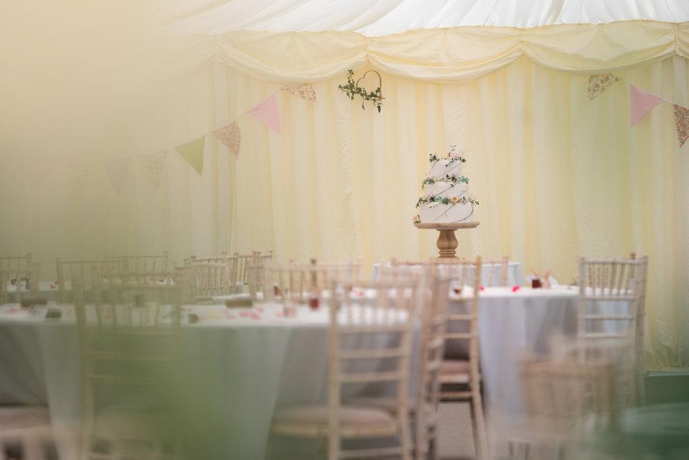 Wedding Cake - Powys Wedding Photography
